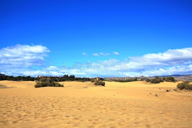 Maspalomas le dune di sabbia fotografia stock