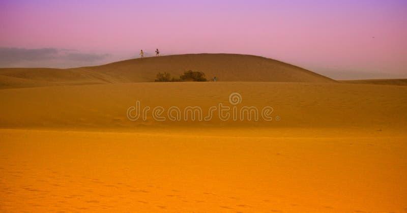 Maspalomas pustyni diuny przy półmrokiem zdjęcie stock