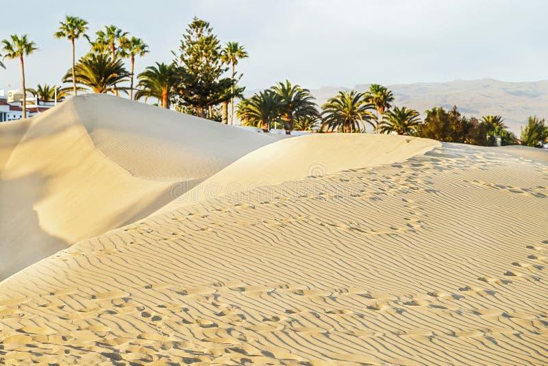 Maspalomasstrand met zandige duinen Gran Canaria, Canarische Eilanden, Spanje De ruimte van het exemplaar royalty-vrije stock afbeelding