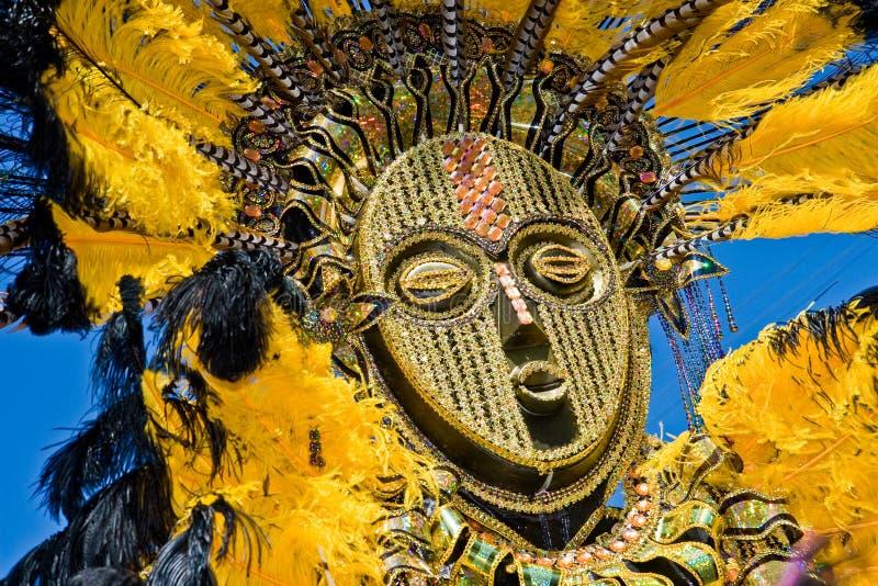 Masque plumeux image stock