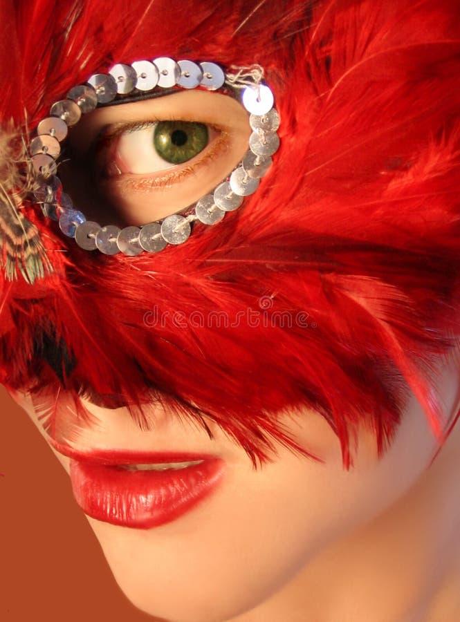 masquerade стоковые фотографии rf