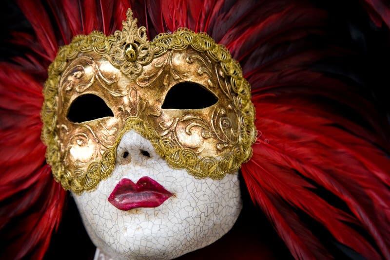 masquez Venise image libre de droits