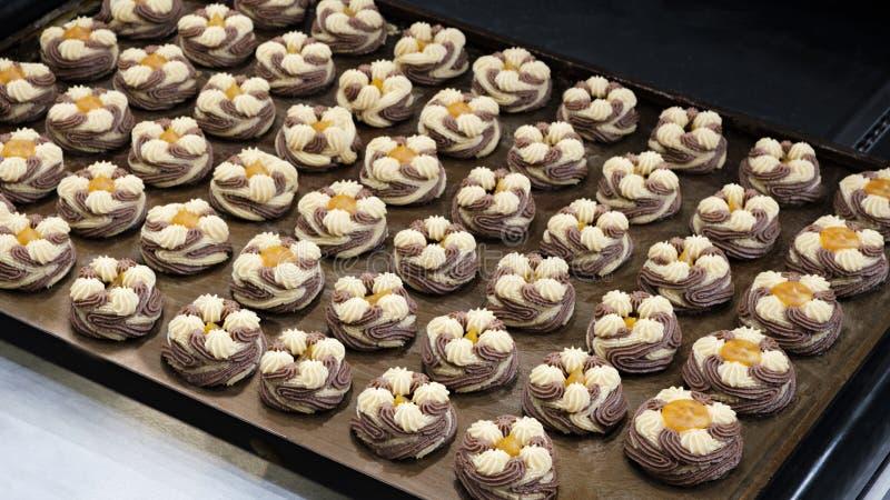 Massa da cookie dos pedaços de chocolate na bandeja imagem de stock