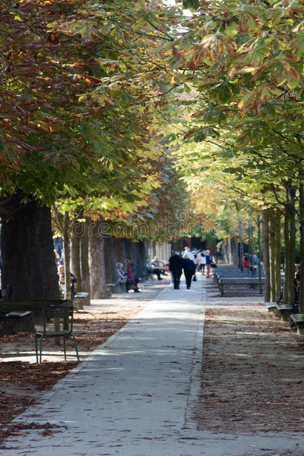 massa de Parisians, exatamente aleia de Jardin du Luxemburgo foto de stock