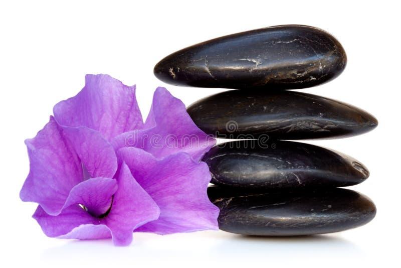 Massage-Steine mit Hibiscus-Blume lizenzfreie stockbilder