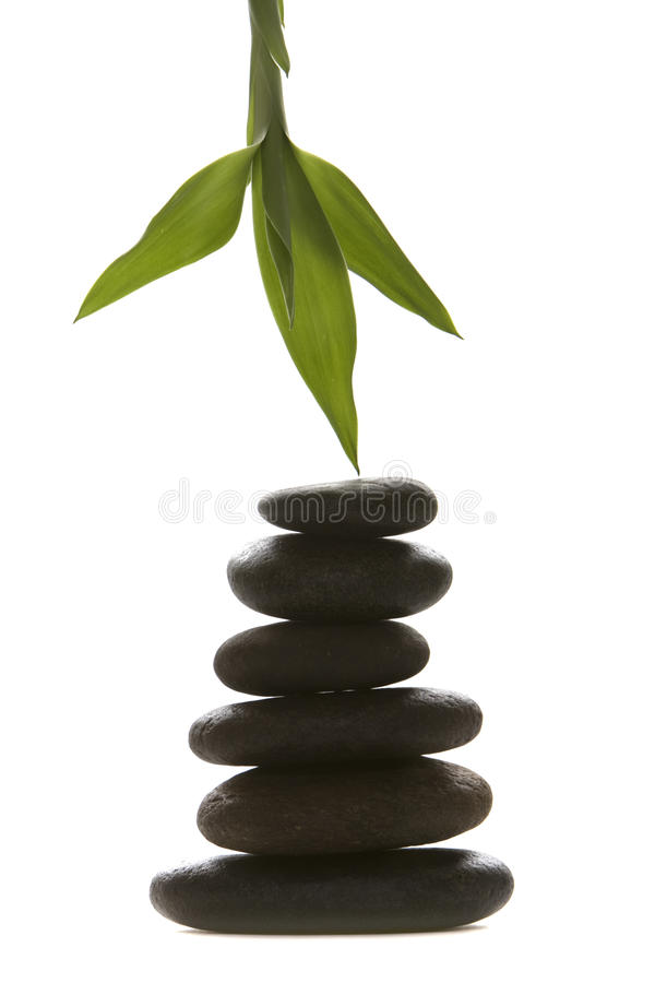 Download Massage Therapy Stones And Green Bamboo Leaf Stock Image - Image of stack, background: 13370061
