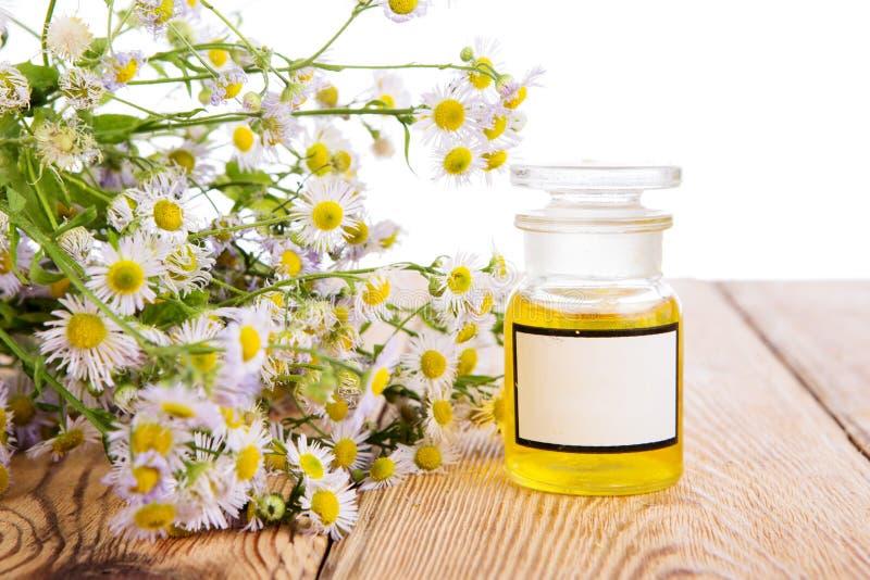 Massageolja i en glasflaska med kamomill blommar på träta royaltyfri foto