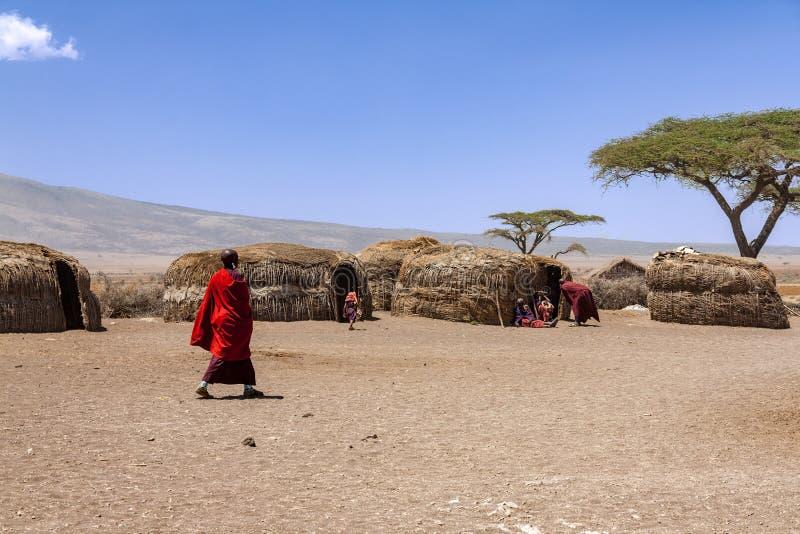 Massai-Dorfbewohner mit ihrem Alltagsleben innerhalb eines Massai-Dorfs stockfotos
