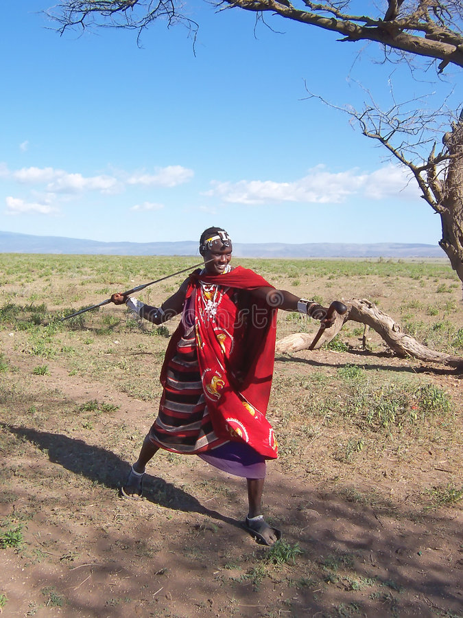Download Massai warrior stock image. Image of acacias, farm, park - 2408665