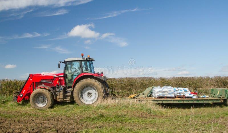 Massey Ferguson припарковало вверх в поле с нагрузкой на трейлере стоковое фото rf