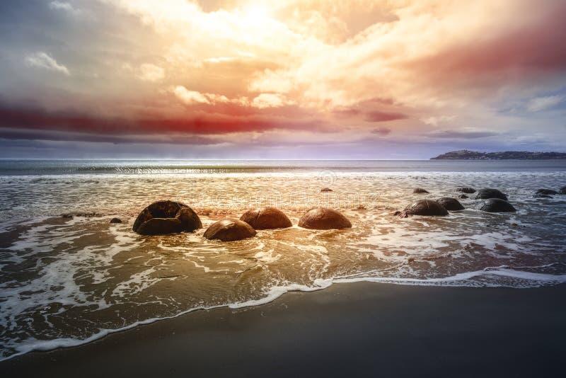 Massi alla spiaggia di Moeraki Nuova Zelanda fotografia stock libera da diritti