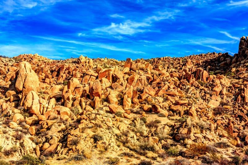 Massi che punteggiano il paesaggio del deserto immagine stock libera da diritti