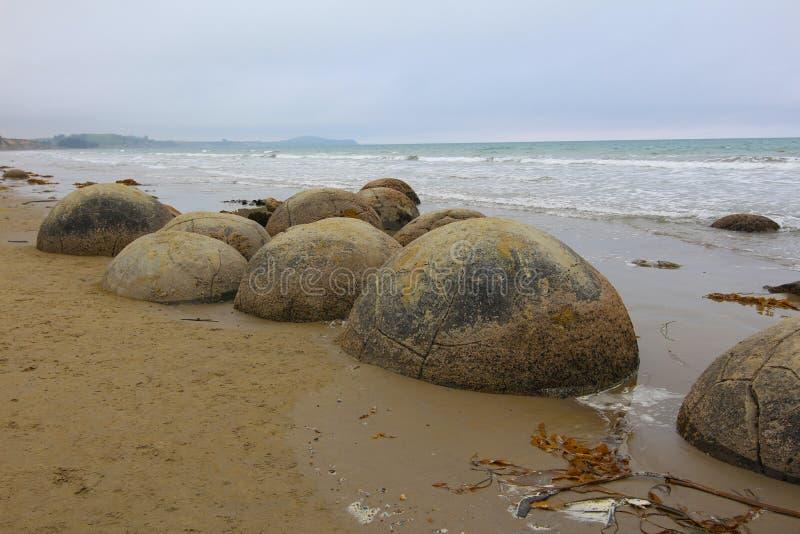 Massi di Moeraki in spiaggia di Koekohe sulla costa Wave tagliata di Otago della Nuova Zelanda fotografia stock libera da diritti
