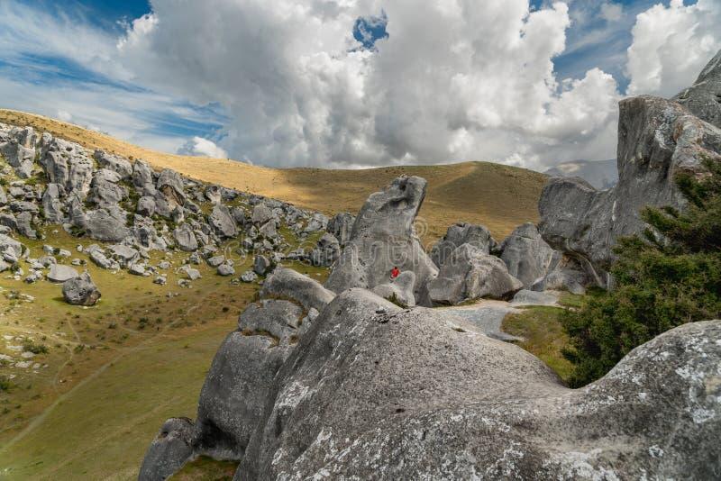 Massi giganti nelle montagne, collina del castello, Nuova Zelanda del calcare fotografia stock libera da diritti