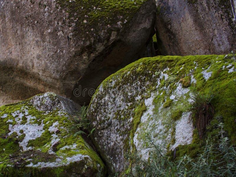 Massi impilati della roccia con muschio fotografia stock libera da diritti
