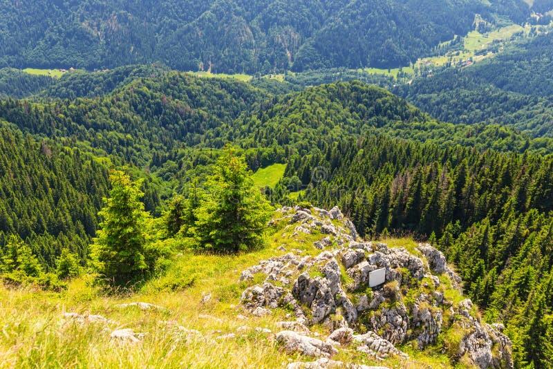 Massiccio di Postavarul, Poiana Brasov, Romania fotografie stock