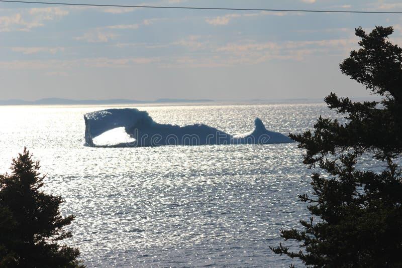Massive Iceberg. That looks like a sea monster in Bonavista Bay Newfoundland canada in summer stock image
