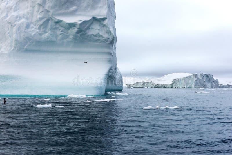 Massivt isberg som svävar i det arktiska havet fotografering för bildbyråer