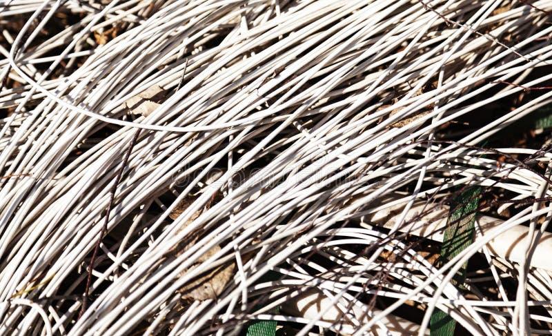 Massor av kablar som ligger på jordningen arkivfoton