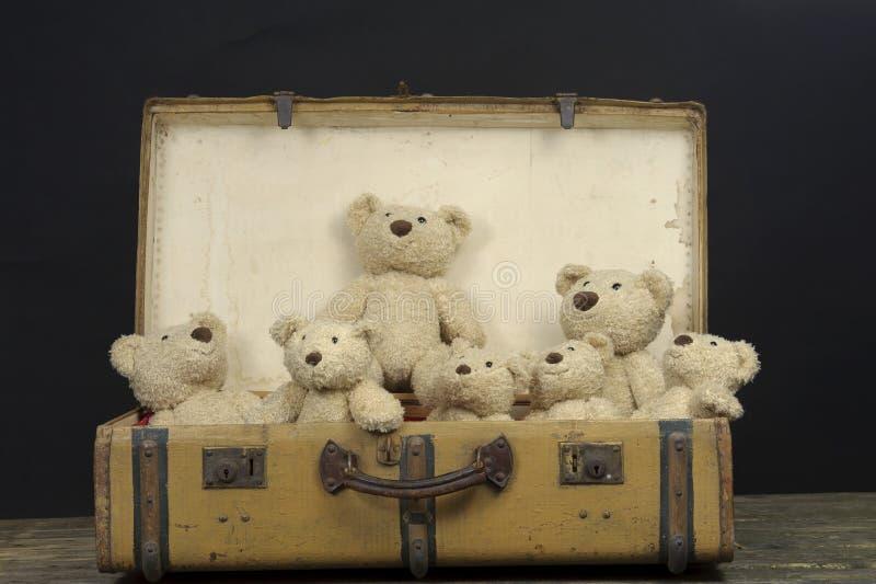 Massor av nallebjörnar i en gammal tappningresväska royaltyfri fotografi