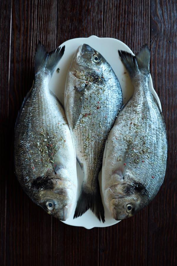 Massor av ny fisk på plattan för att laga mat royaltyfri bild