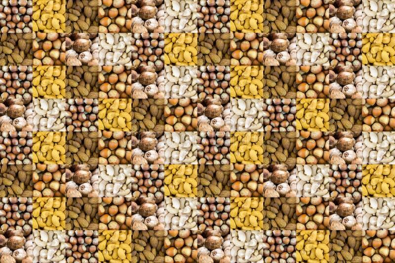 Massor för mandlar för hasselnötkokosnötkasju av tokig blandad källa av protein varierade fastställd design för rengöringsduk för royaltyfri fotografi