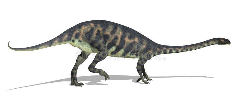 massospondylus δεινοσαύρων διανυσματική απεικόνιση