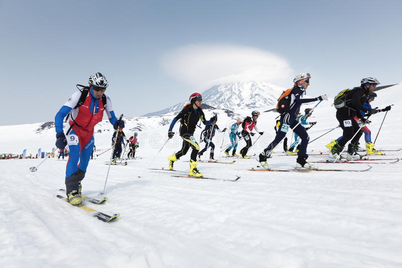 Massstartloppet, skidar bergsbestigare klättrar skidar på på berget Team Race skidar bergsbestigning på Kamchatka (Ryssland) royaltyfri fotografi