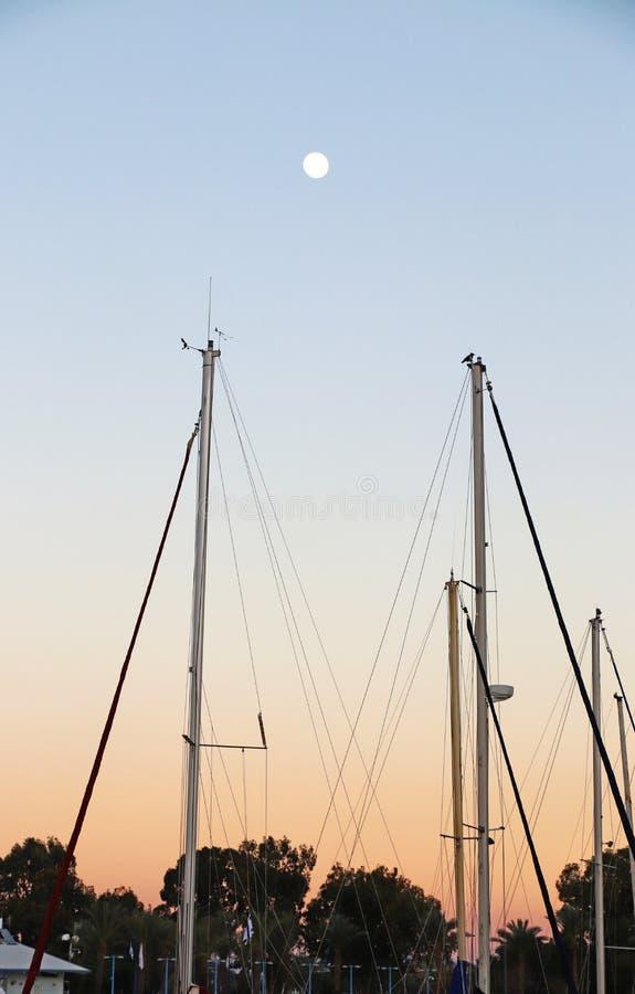 Maste von Booten im Jachthafen für Yachten stockfotografie