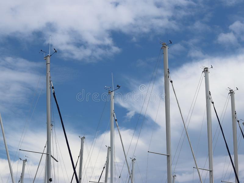 Maste von Segeljachten gegen den blauen Himmel mit weißen Wolken Yacht im Jachthafen während des Morgendämmerungssegelns hinter d lizenzfreie stockbilder