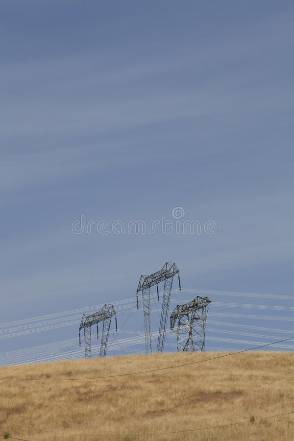 Masten auf einem Gebiet lizenzfreie stockbilder