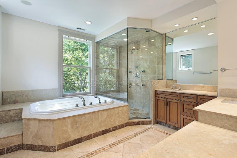 Master Bath With Step Up Tub Stock Photo Image Of Decor