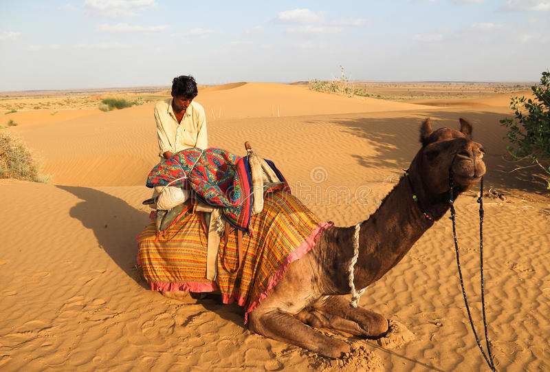 The master of the camel stock images