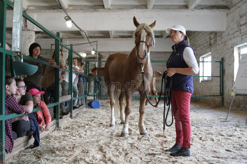 Master class of communication with the horse. Horse breeders are. Ranch Solomakhino, Kiev region, Ukraine - May 19, 2018: Master class of communication with the royalty free stock photography