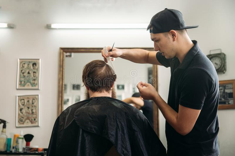 Master cuts hair and beard of men in the barbershop, hairdresser makes hairstyle for a young man royalty free stock photography