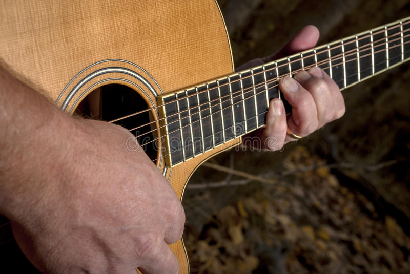 Master guitarist plays the guitar in the forest stock photography