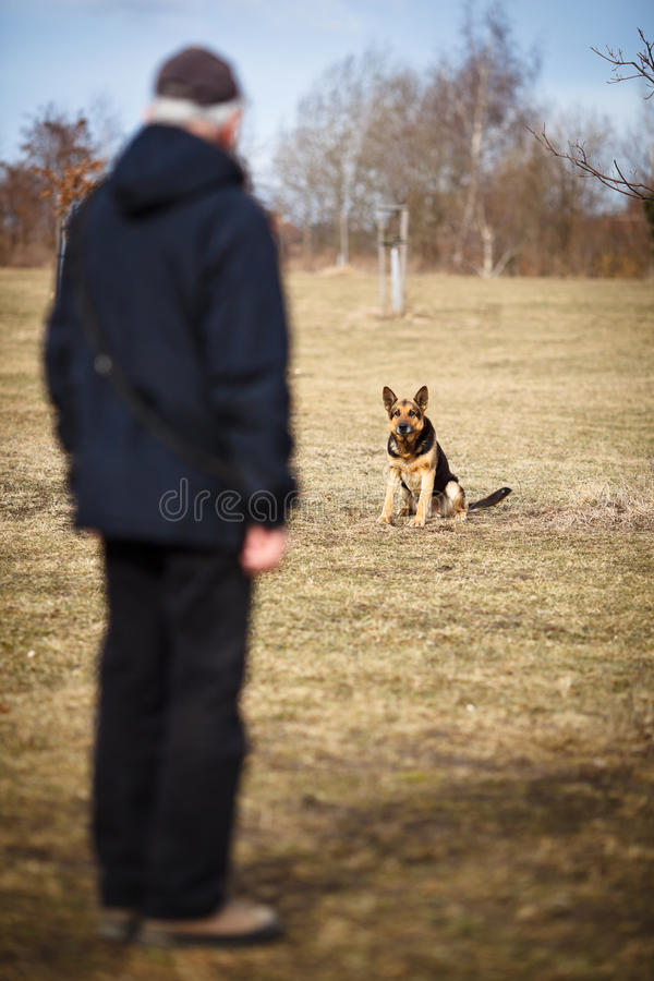 Master and his obedient dog. Master and his obedient (German Shepherd) dog royalty free stock image
