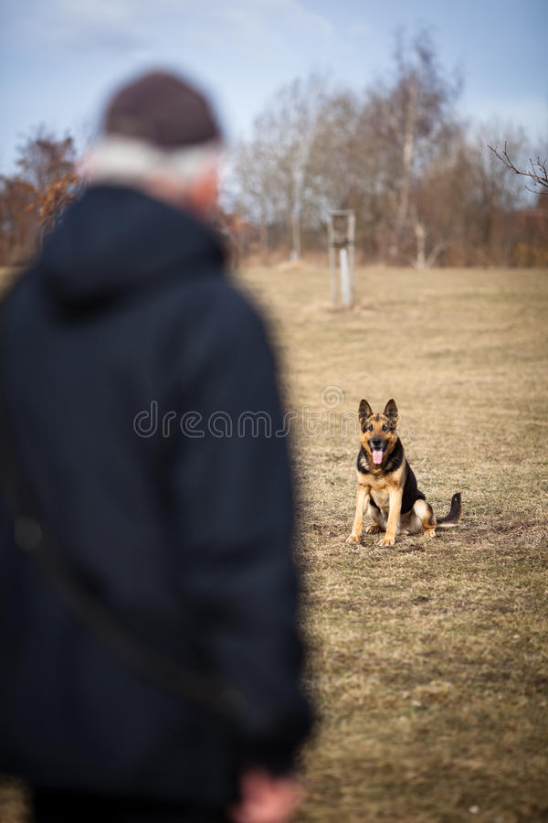 Master and his obedient dog. Master and his obedient (German Shepherd) dog royalty free stock photo
