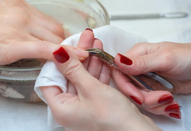 The master of the manicure cuts the cuticles on the hands in the beauty salon. royalty free stock photo