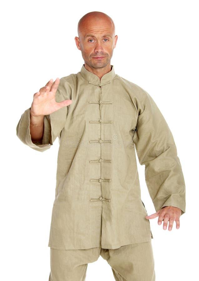 Free Master Of Tai-chi Stock Photos - 11201893
