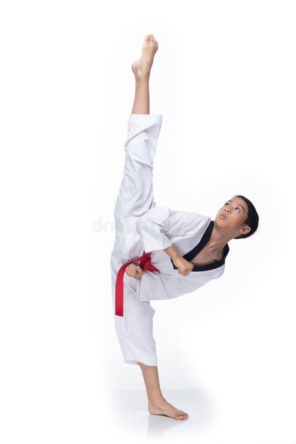 Free Master Red Belt TaeKwonDo Student Royalty Free Stock Photography - 150513127