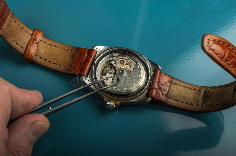 Master repairs the disassembled mechanical watch.  stock image