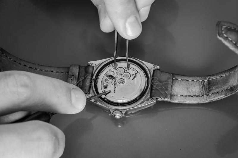 Master repairs the disassembled mechanical watch.  royalty free stock photography