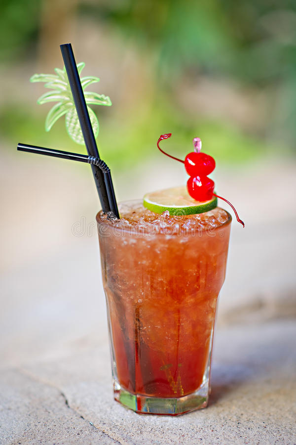 Master tropicale alcolico di rinfresco artificiere del cocktail immagine stock libera da diritti