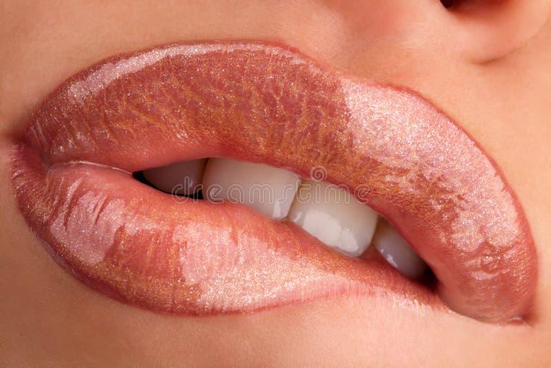 Mastication des languettes photo stock