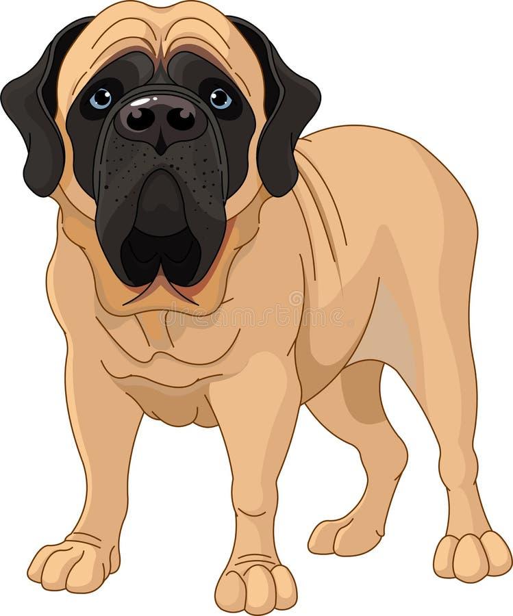 Mastiff anglais illustration de vecteur