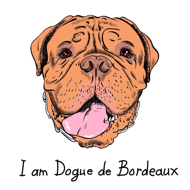Mastiff drôle de Français de chien de hippie de bande dessinée de vecteur illustration de vecteur
