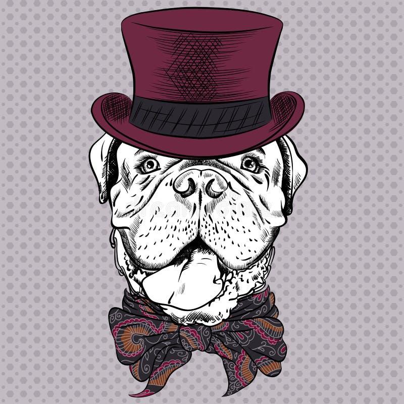 Mastiff drôle de Français de chien de hippie de bande dessinée de vecteur illustration stock