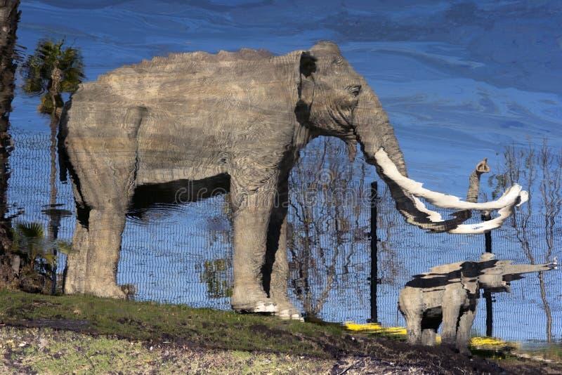mastodonte Pensé ils étaient éteints ? images stock