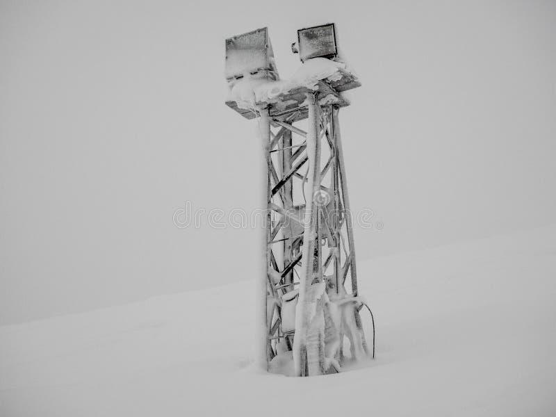 Mastro claro congelado na inclinação da neve da montanha em Khibiny no tempo de inverno o mais frio foto de stock royalty free
